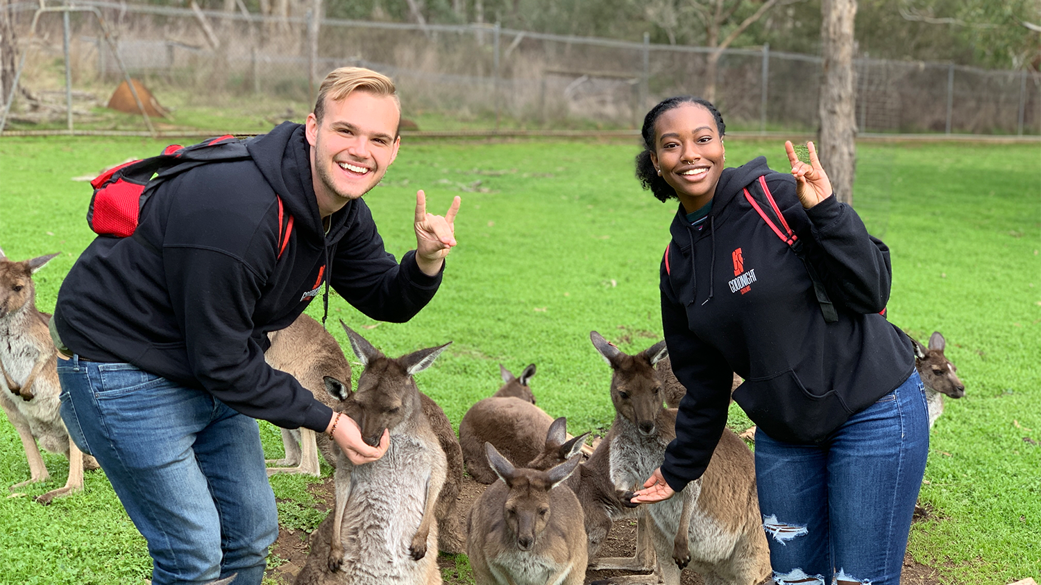 Two students are making wolfies with her hands while also petting kangaroos in Australia during their study abrod semester.